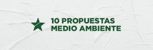 9912f FSP CF 10 propuestas Ambiente v2